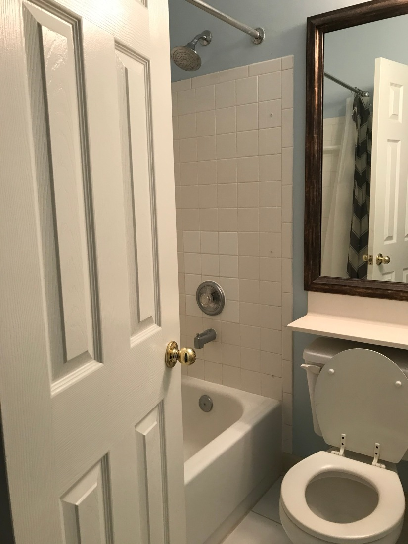 Another Bathroom Remodel - Spotswood House